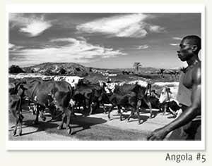 angola#5b